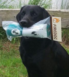 Chapeau Chilli Kaninhuette bester Hund Ihrer Klasse in Dänemark
